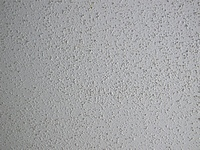 Painting Acoustical Ceilings The Practical House Painting Guide