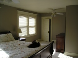 Bedroom with khaki colored walls, off-white ceiling and trim.