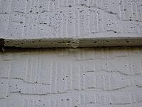 Mold growth on masonite siding.