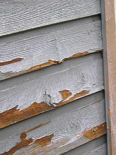 Peeling paint on 45 degree vertical lap cedar siding.