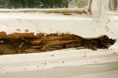 Severe rot damage in window sash.