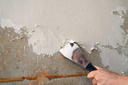 Removing painted wallpaper from plaster wall.