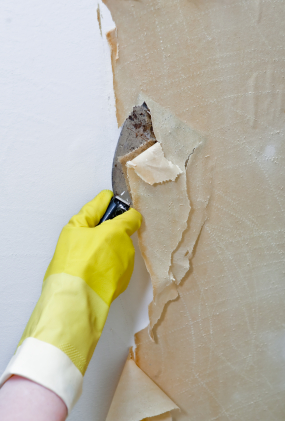 Stripping wet wallpaper backing off a wall.