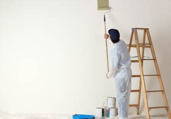 Professional Painter